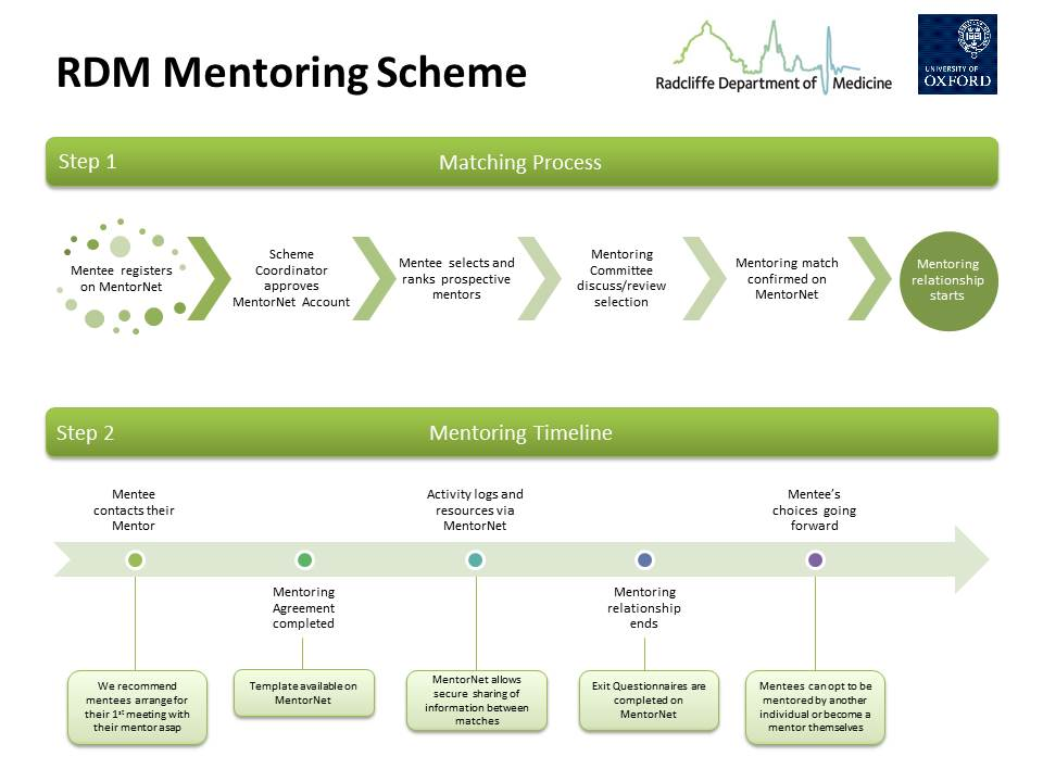 Mentoring — Radcliffe Department of Medicine